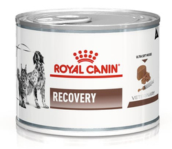 Влажный корм Royal Canin Recovery для собак и кошек в период выздоровления или при липидозе печени у кошек